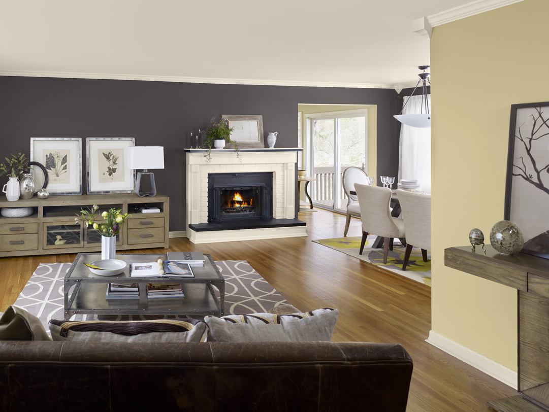 Light Color Paint For Living Room Modern Color Schemes For Dining Rooms Euskal Blue Room Ideas