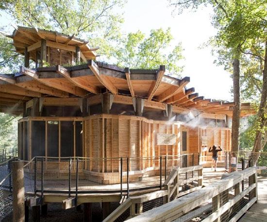 solar-tree-home