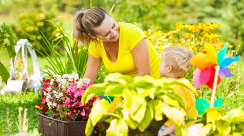How Winter Prep Makes For a Glamorous Summer Garden